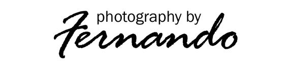 Fernando Studio logo